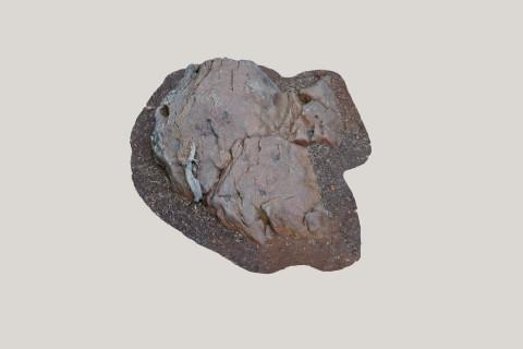 Modelo 3D Petroglifo. O Rosal